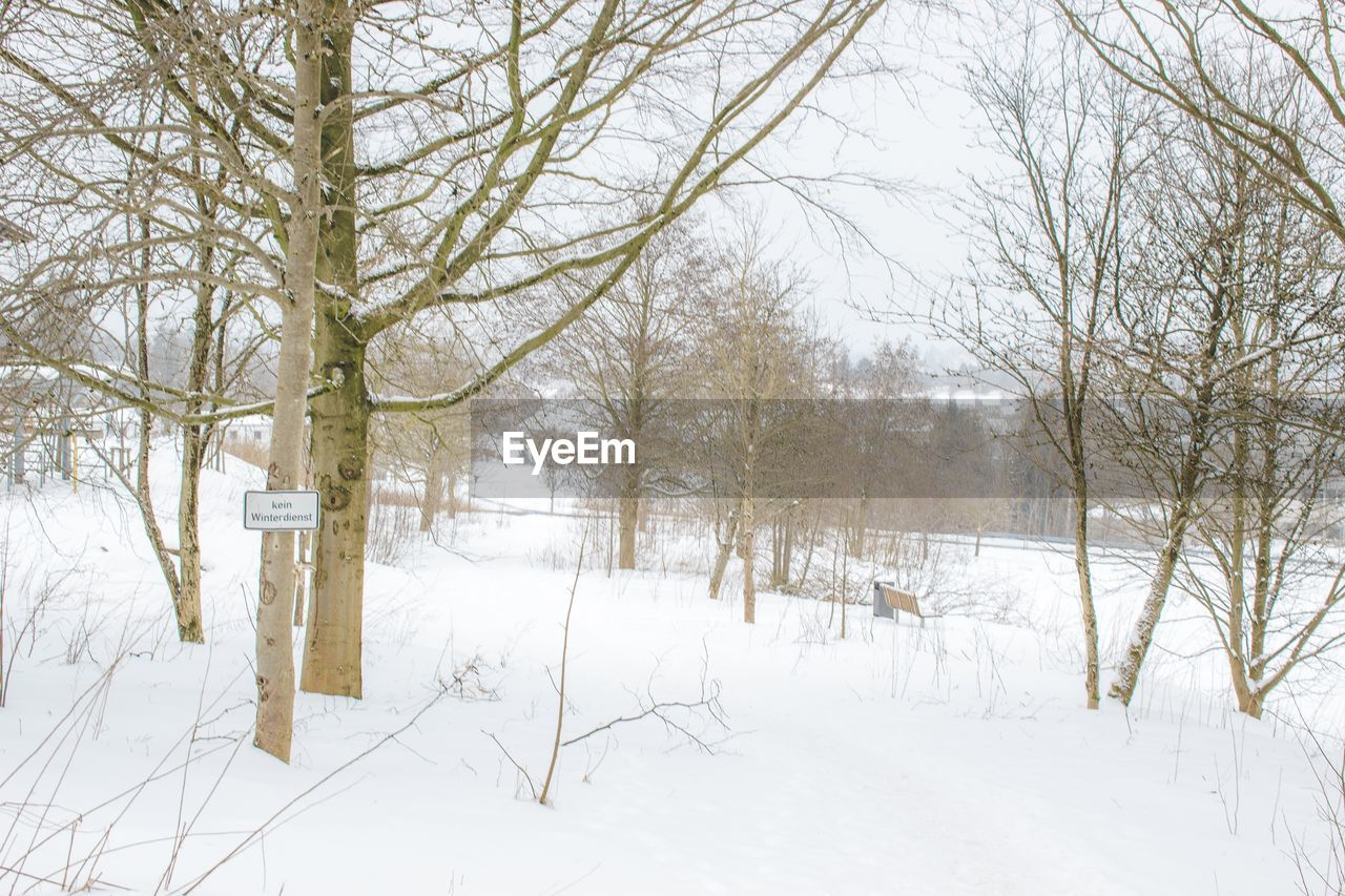 winter, snow, cold temperature, nature, white color, tranquil scene, tranquility, bare tree, weather, tree, beauty in nature, scenics, landscape, no people, outdoors, day