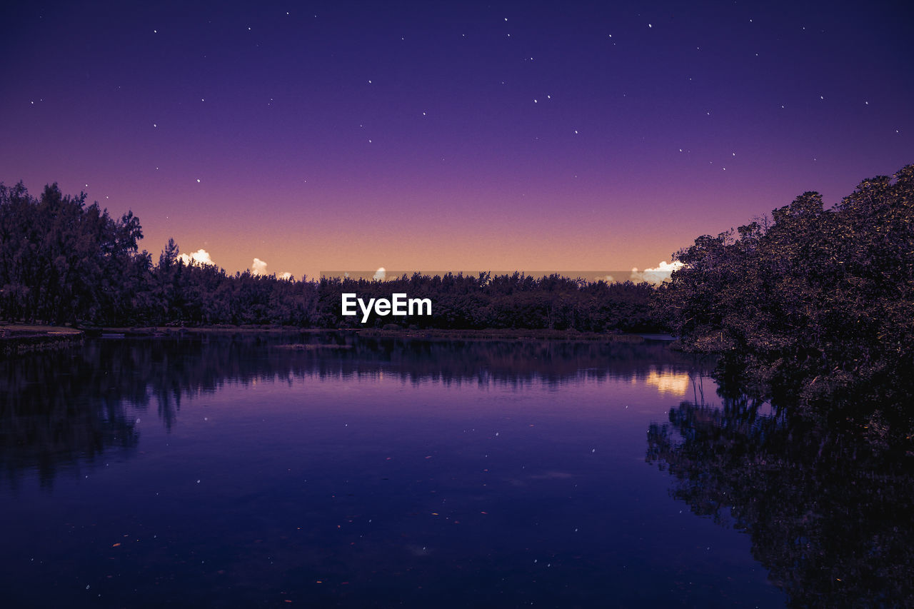 sky, night, scenics - nature, beauty in nature, tree, lake, water, tranquil scene, tranquility, reflection, plant, star - space, space, astronomy, nature, no people, idyllic, waterfront, star, purple