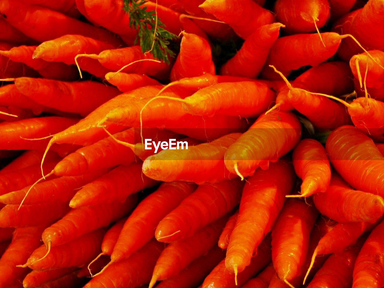 full frame, backgrounds, freshness, food and drink, large group of objects, food, red, abundance, market, retail, for sale, wellbeing, healthy eating, vegetable, close-up, orange color, root vegetable, no people, market stall, raw food, sale, retail display, consumerism