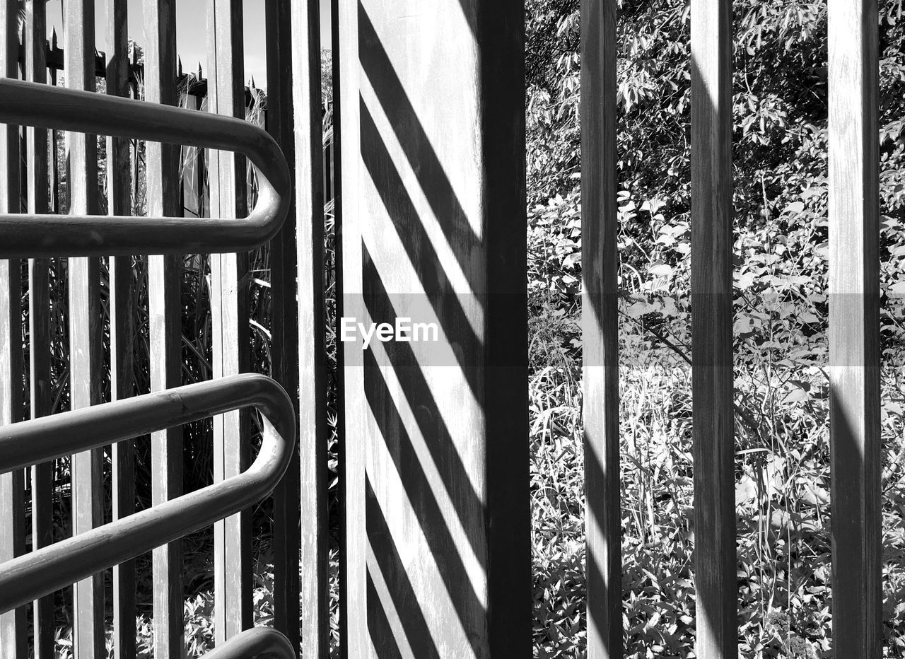 railing, shadow, day, no people, sunlight, steps and staircases, steps, outdoors, nature, tree, close-up
