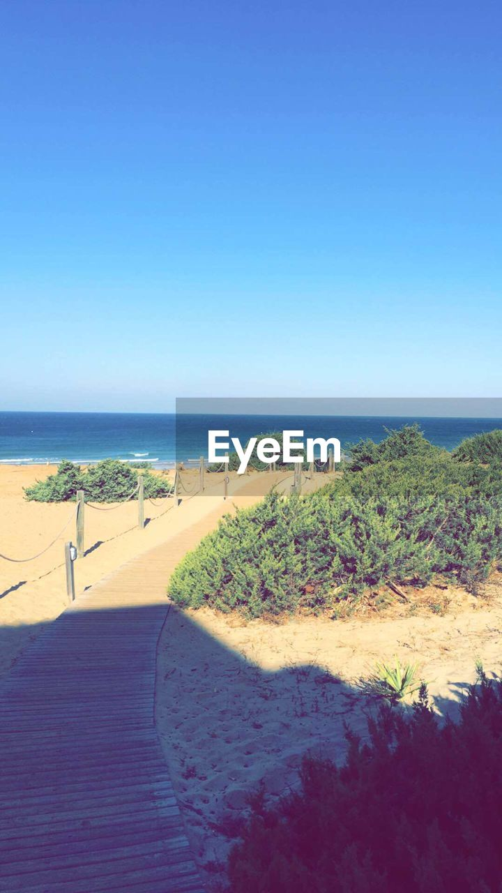 sea, beach, horizon over water, water, sand, clear sky, coastline, scenics, beauty in nature, nature, tranquil scene, vacations, blue, leisure activity, sunny, tourism, travel destinations, sky, one person, day, tranquility, outdoors, summer, landscape, real people, wave, grass, people, adult