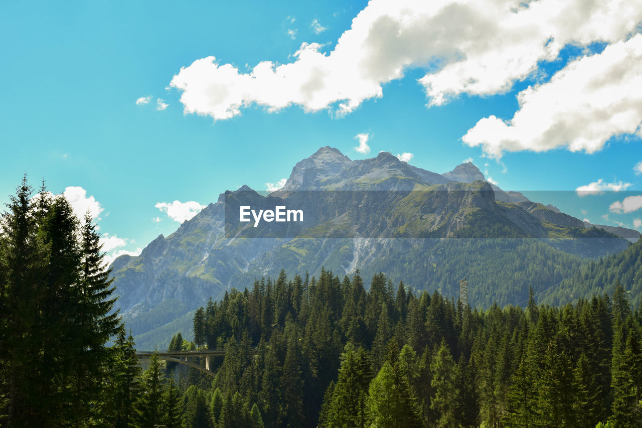 mountain, nature, sky, forest, adventure, peak, beauty in nature, tree, landscape, scenery, range, outdoors, no people, high, day