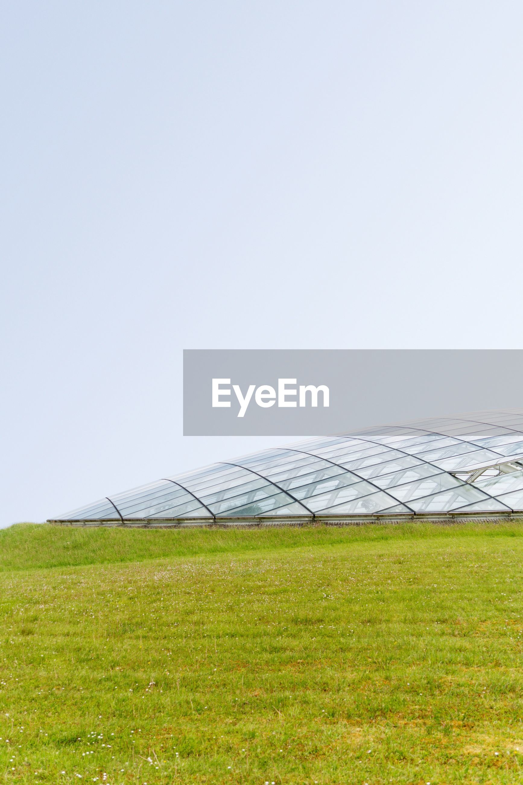 grass, copy space, sky, environment, plant, field, clear sky, nature, land, day, landscape, green color, no people, renewable energy, growth, solar energy, environmental conservation, solar panel, alternative energy, outdoors, sustainable resources