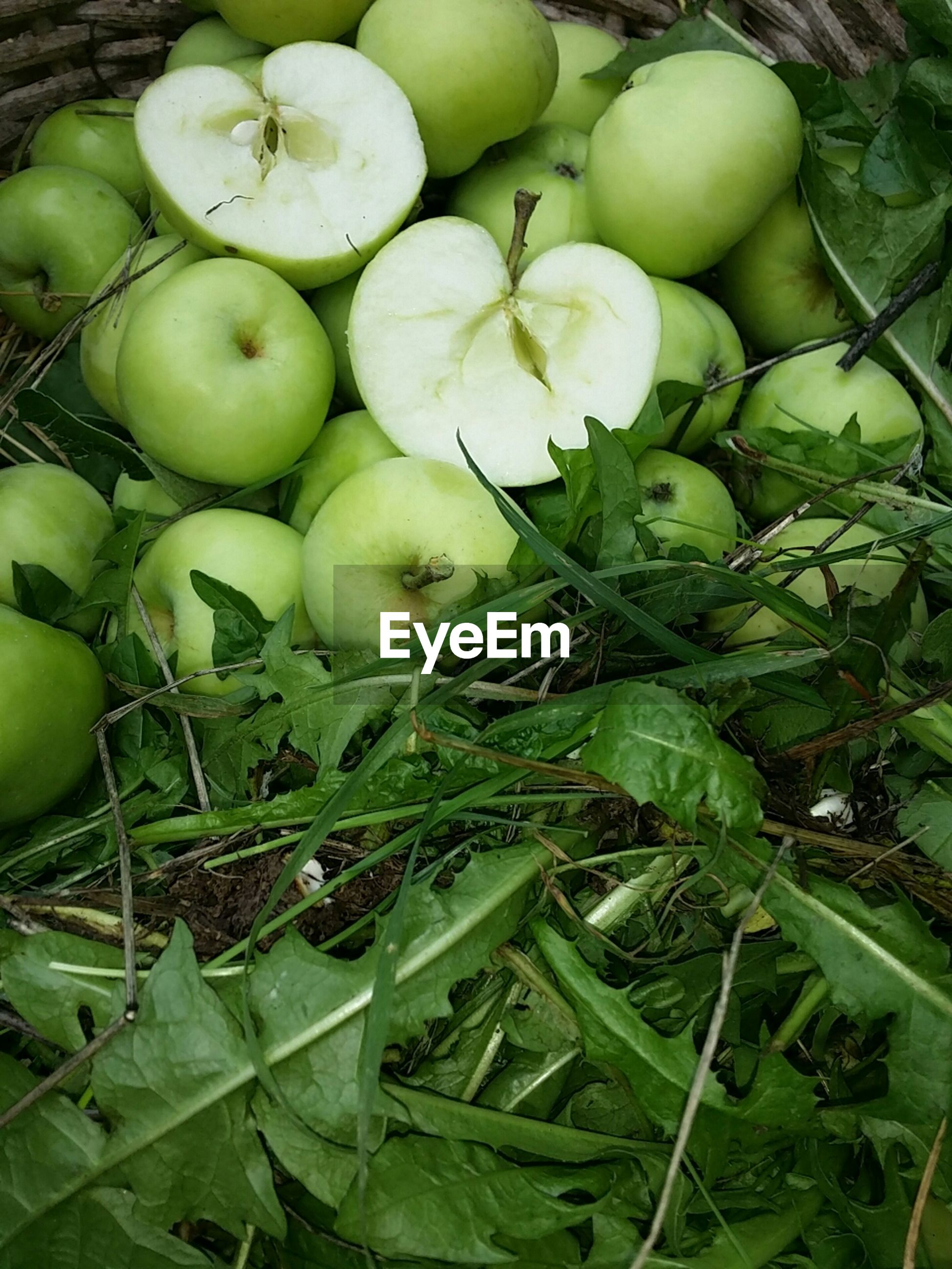High angle view of apples and leaves