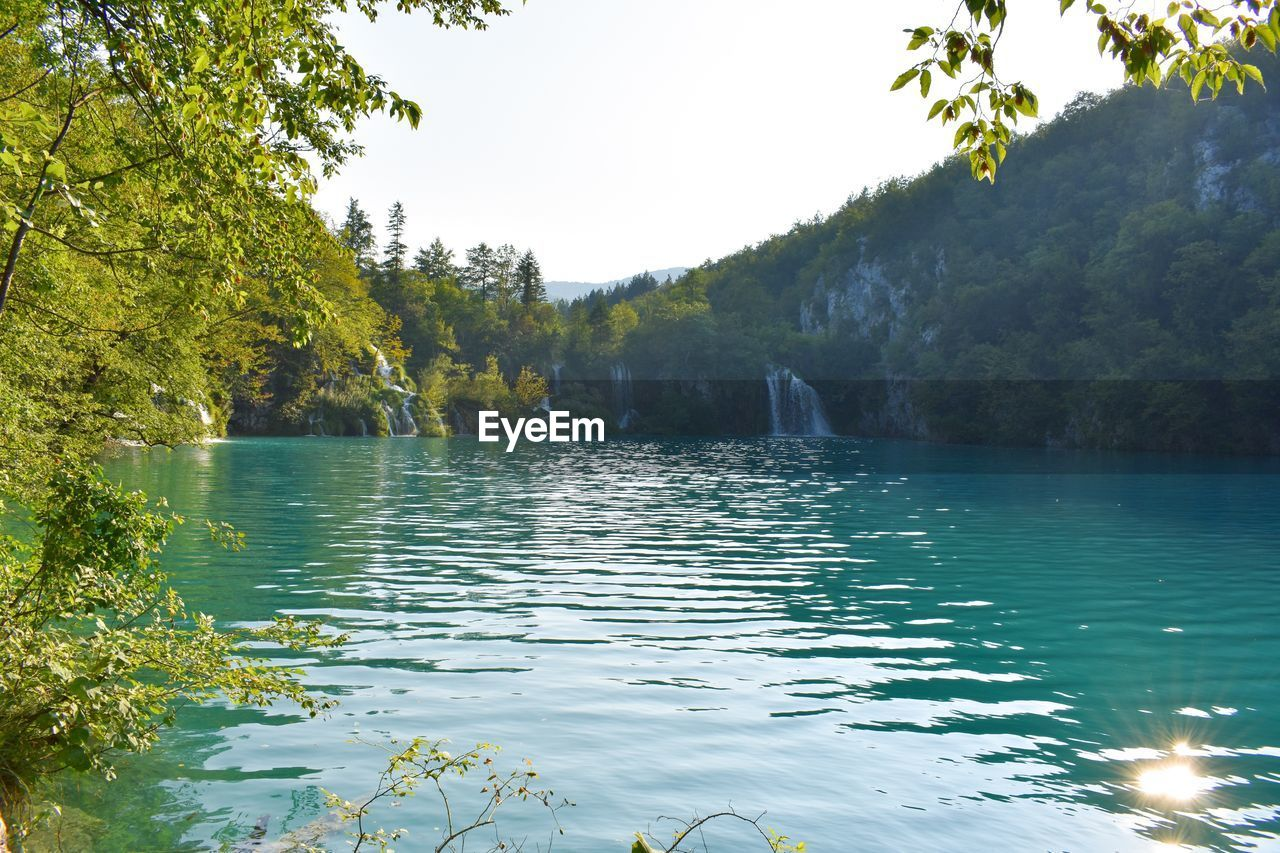water, tree, plant, beauty in nature, tranquility, scenics - nature, tranquil scene, lake, nature, sky, waterfront, no people, day, non-urban scene, reflection, forest, outdoors, clear sky, flowing water