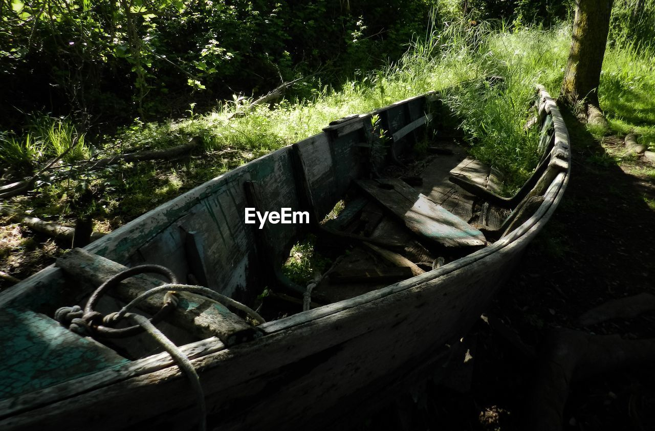 tree, plant, nature, nautical vessel, abandoned, land, transportation, day, forest, no people, mode of transportation, old, wood - material, obsolete, tranquility, water, outdoors, damaged, tranquil scene, wood, deterioration, rowboat