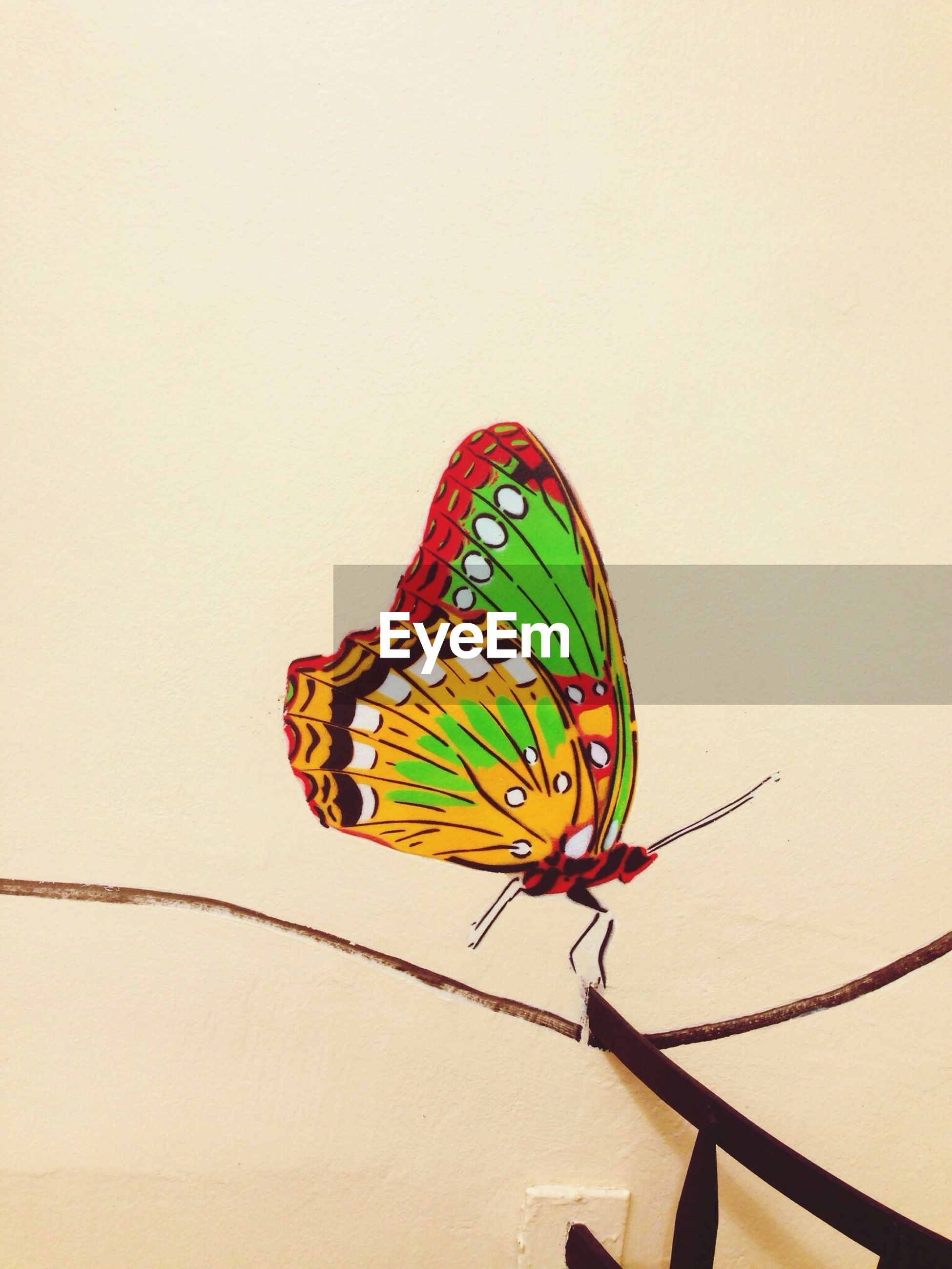 multi colored, art and craft, butterfly, art, butterfly - insect, copy space, close-up, indoors, wall - building feature, pattern, creativity, one animal, insect, animal themes, animal representation, design, no people, yellow, decoration, striped