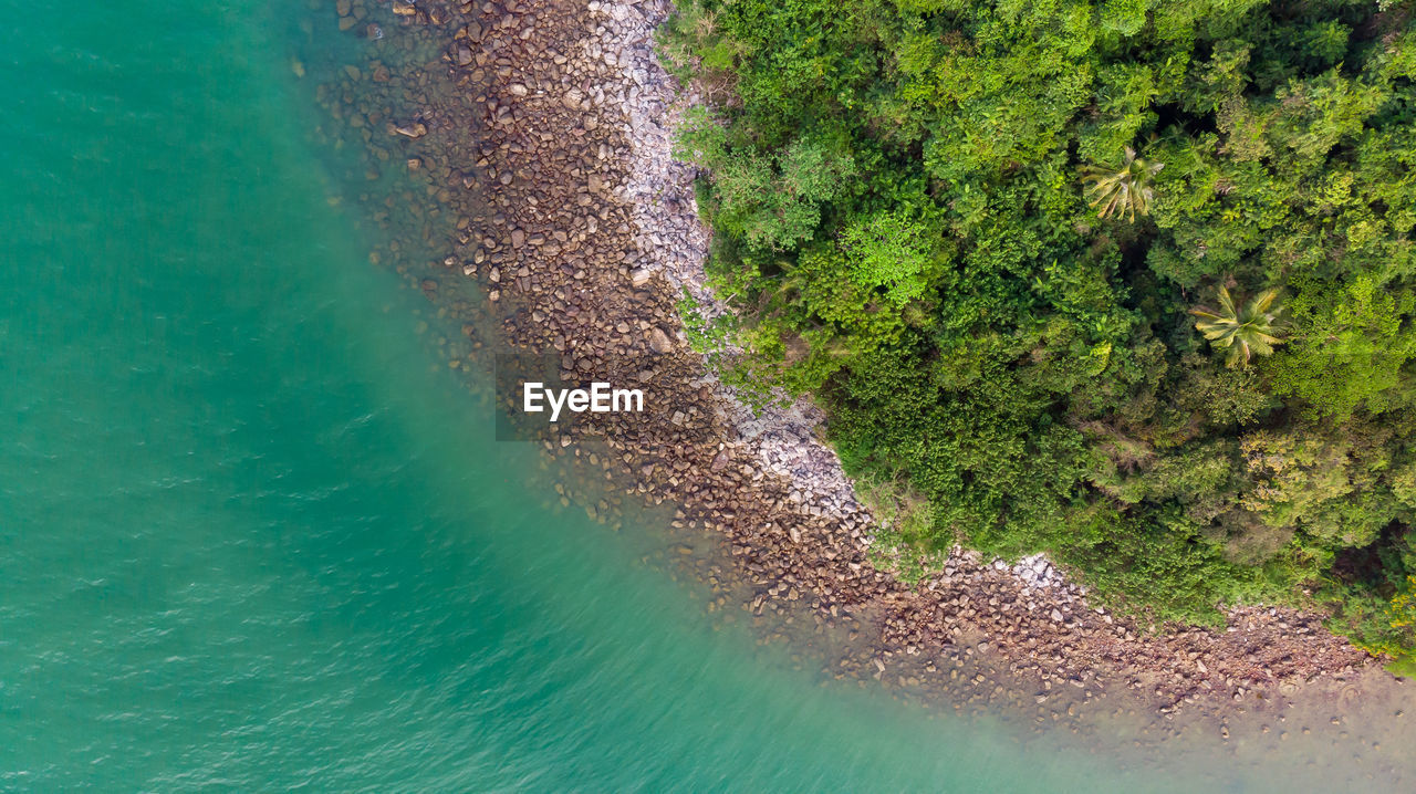 water, beauty in nature, sea, green color, nature, no people, day, plant, high angle view, scenics - nature, tranquility, outdoors, tranquil scene, tree, land, aerial view, transparent, growth, turquoise colored