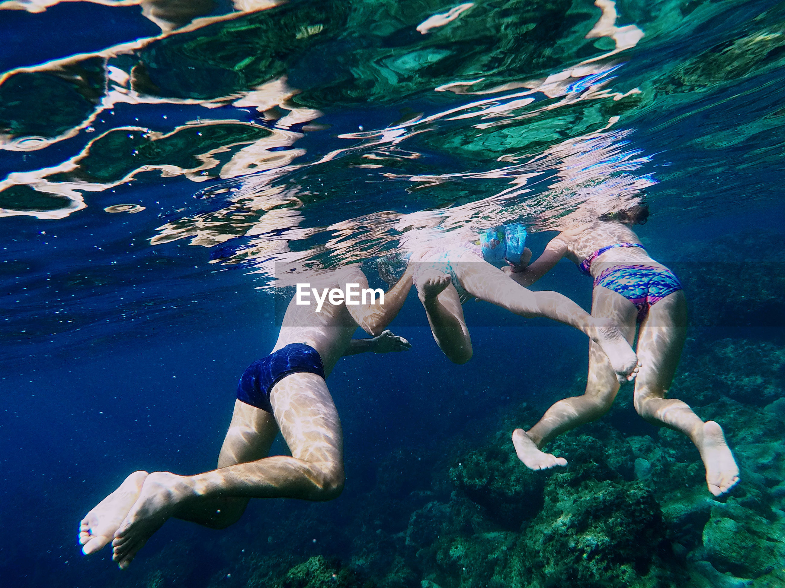 Low section of people swimming in sea