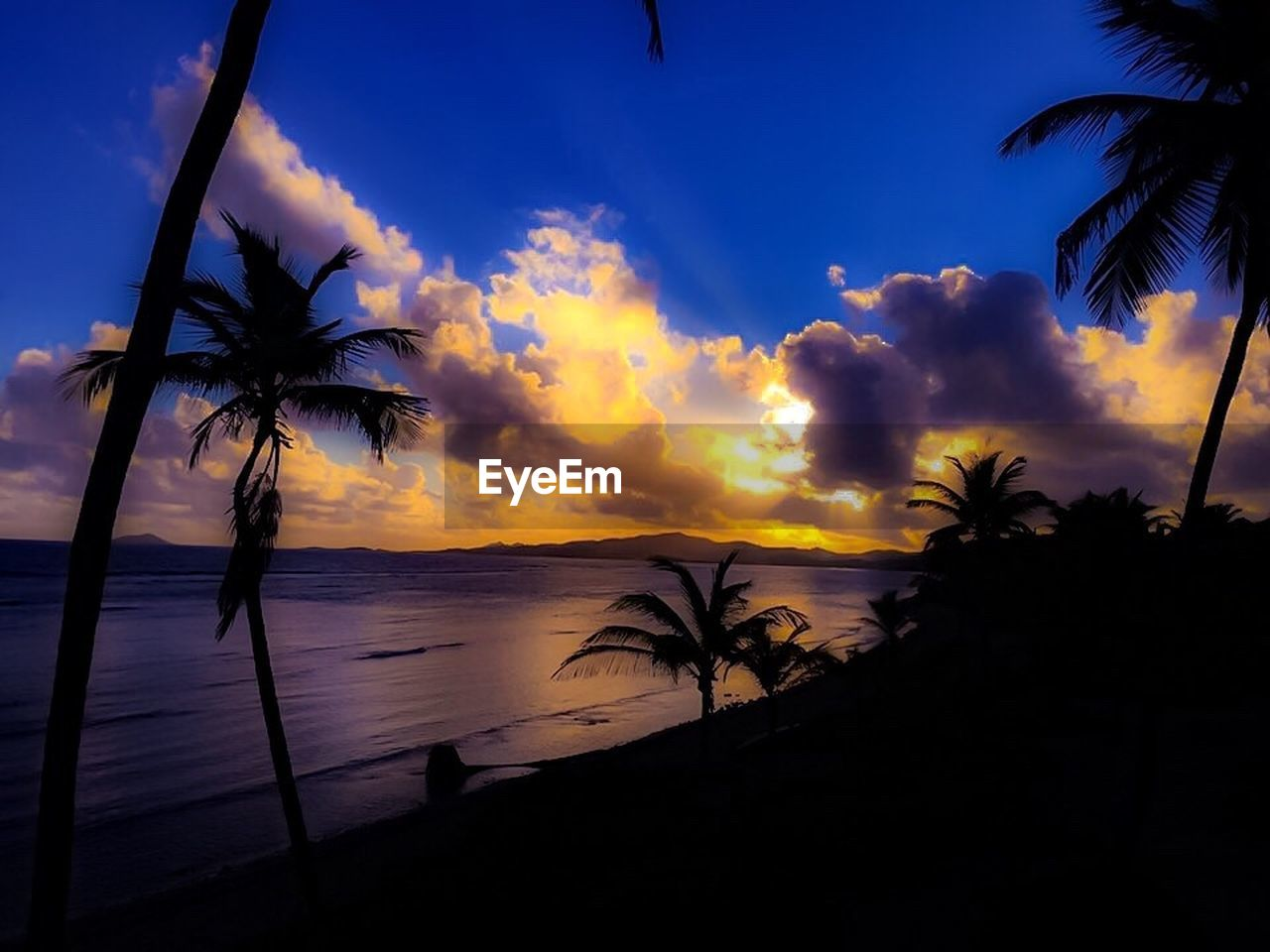 palm tree, sea, silhouette, beauty in nature, sunset, beach, nature, tranquility, sky, tranquil scene, tree, scenics, water, no people, horizon over water, growth, cloud - sky, outdoors, day