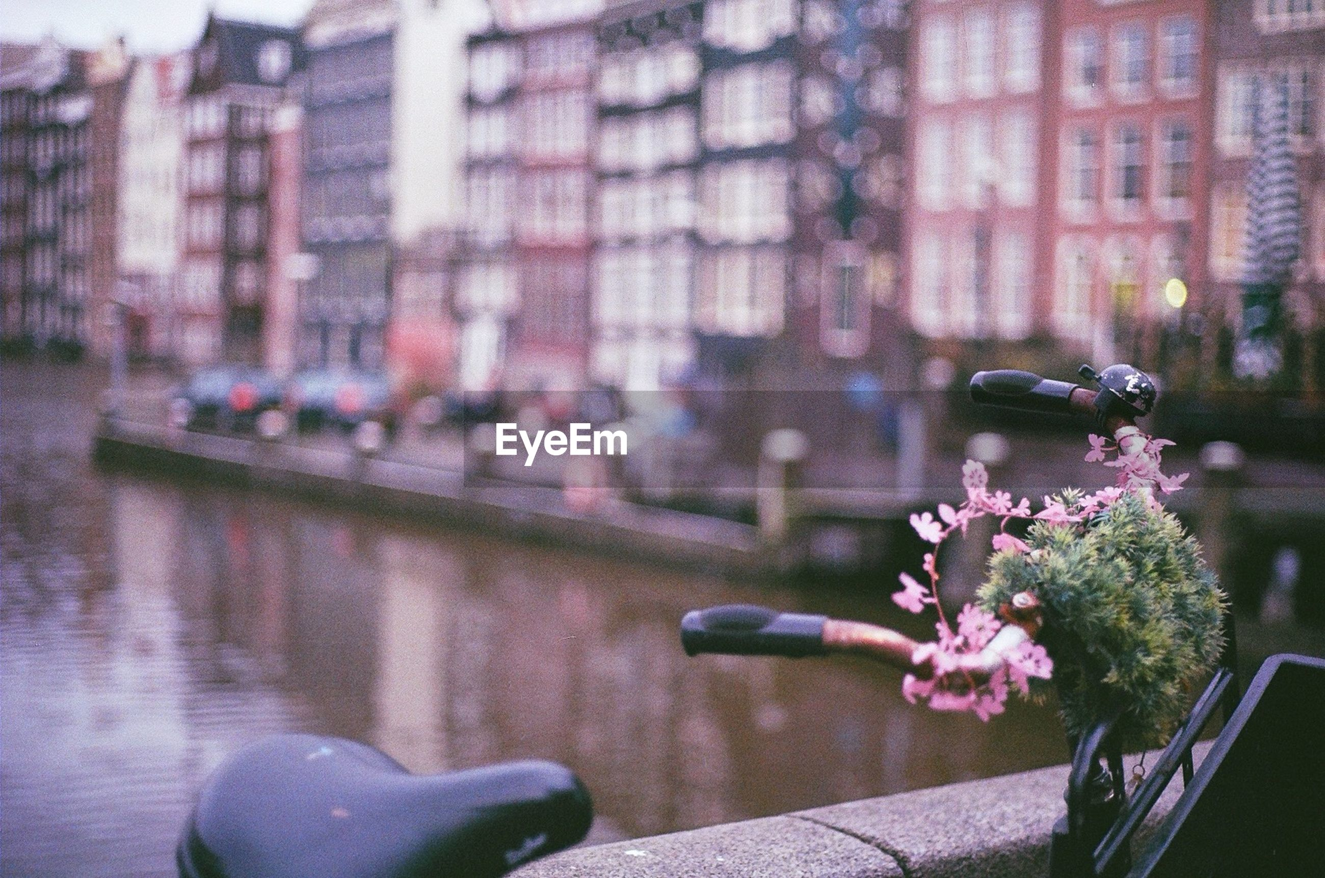 flower, building exterior, architecture, built structure, water, freshness, focus on foreground, city, fragility, pink color, petal, potted plant, plant, outdoors, day, incidental people, nature, growth, street, close-up
