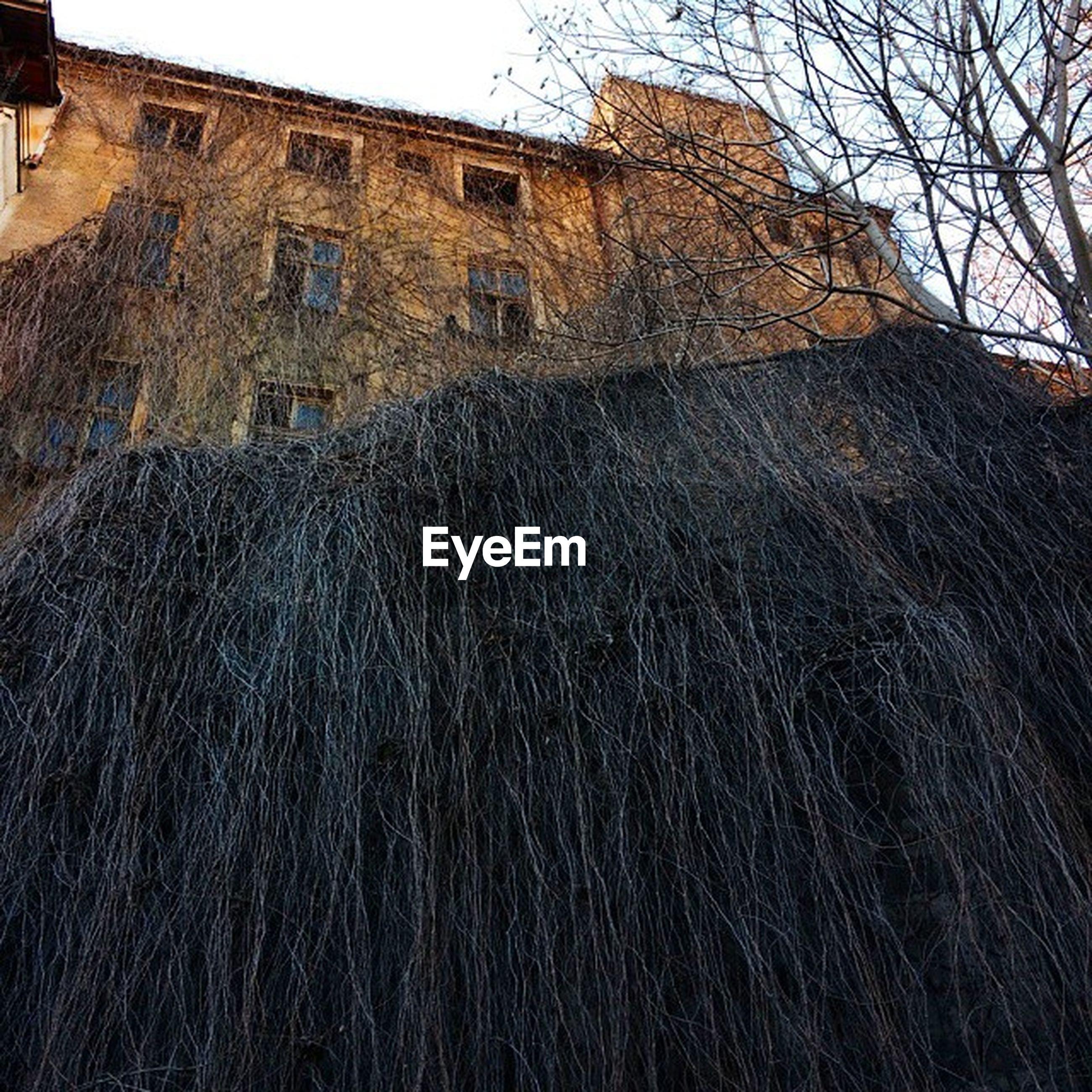 Bulgaria Plovediv Plovdiv Travel ghost house