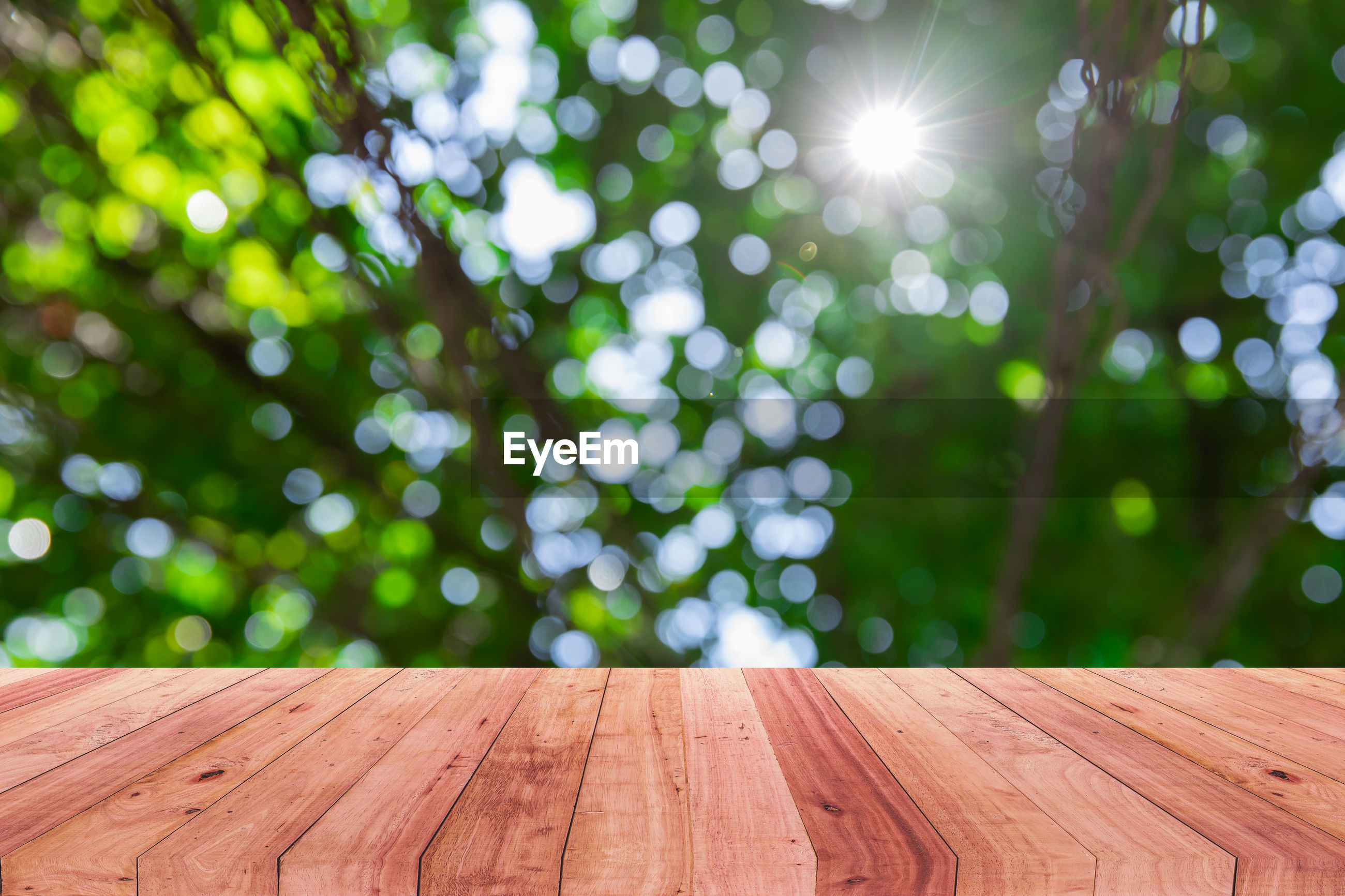 LOW ANGLE VIEW OF WOODEN TABLE ON TREE
