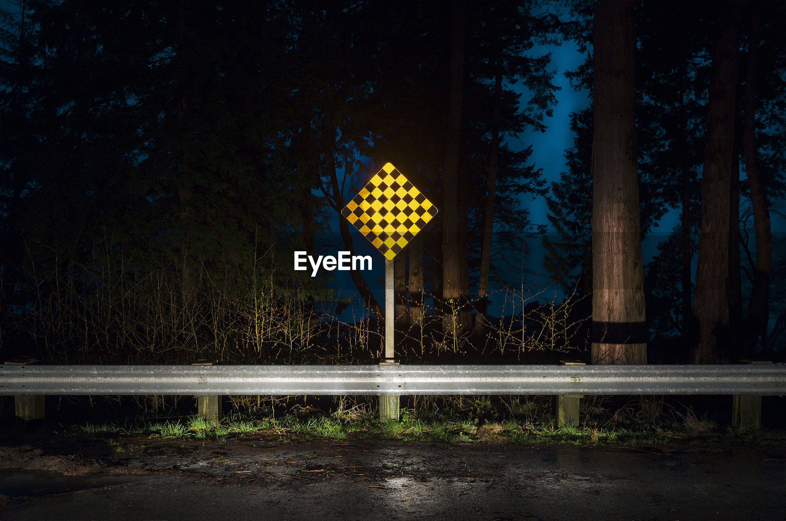 ILLUMINATED INFORMATION SIGN AGAINST TREES AT NIGHT