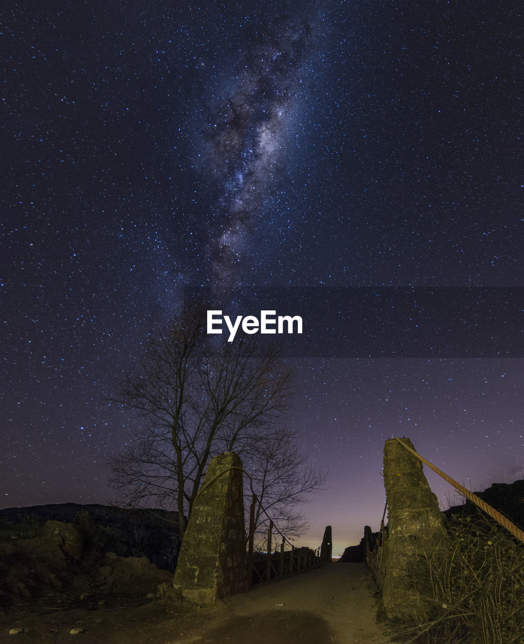 star - space, sky, astronomy, night, space, scenics - nature, beauty in nature, tranquility, galaxy, tree, tranquil scene, low angle view, star, nature, no people, plant, star field, infinity, architecture, idyllic, outdoors, milky way, space and astronomy