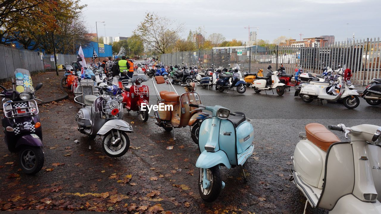 Motor scooters parked on road
