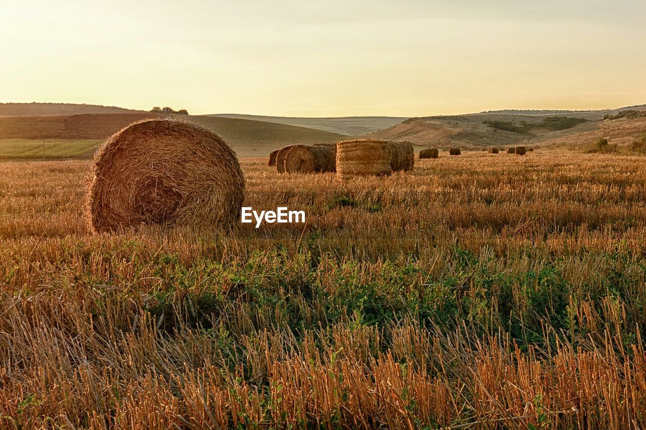 Hay Bales On Field During Sunset