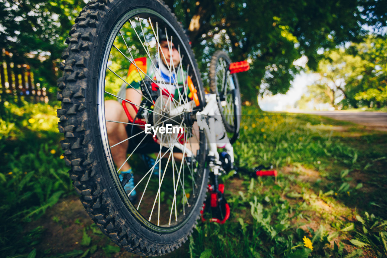 wheel, bicycle, transportation, tire, mode of transportation, land vehicle, focus on foreground, plant, day, spoke, nature, no people, tree, outdoors, vehicle part, close-up, grass, field, land, shape
