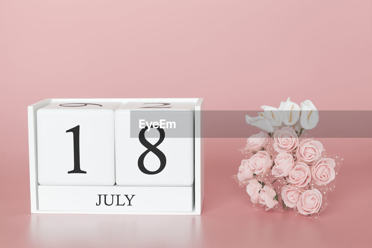 indoors, flowering plant, close-up, flower, plant, no people, pink color, communication, studio shot, wall - building feature, white color, copy space, nature, beauty in nature, colored background, text, container, number, still life, pink background, clock