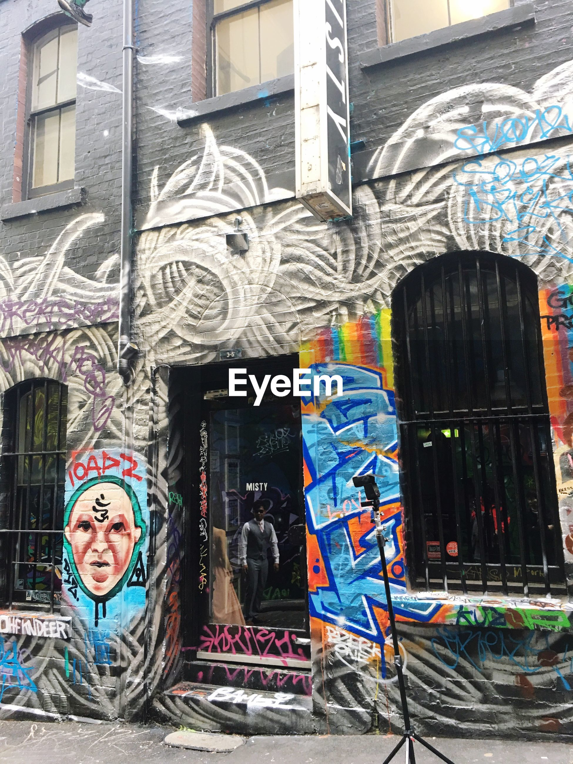 art, art and craft, creativity, building exterior, graffiti, architecture, built structure, human representation, multi colored, wall - building feature, mural, street art, animal representation, window, building, outdoors, day, city