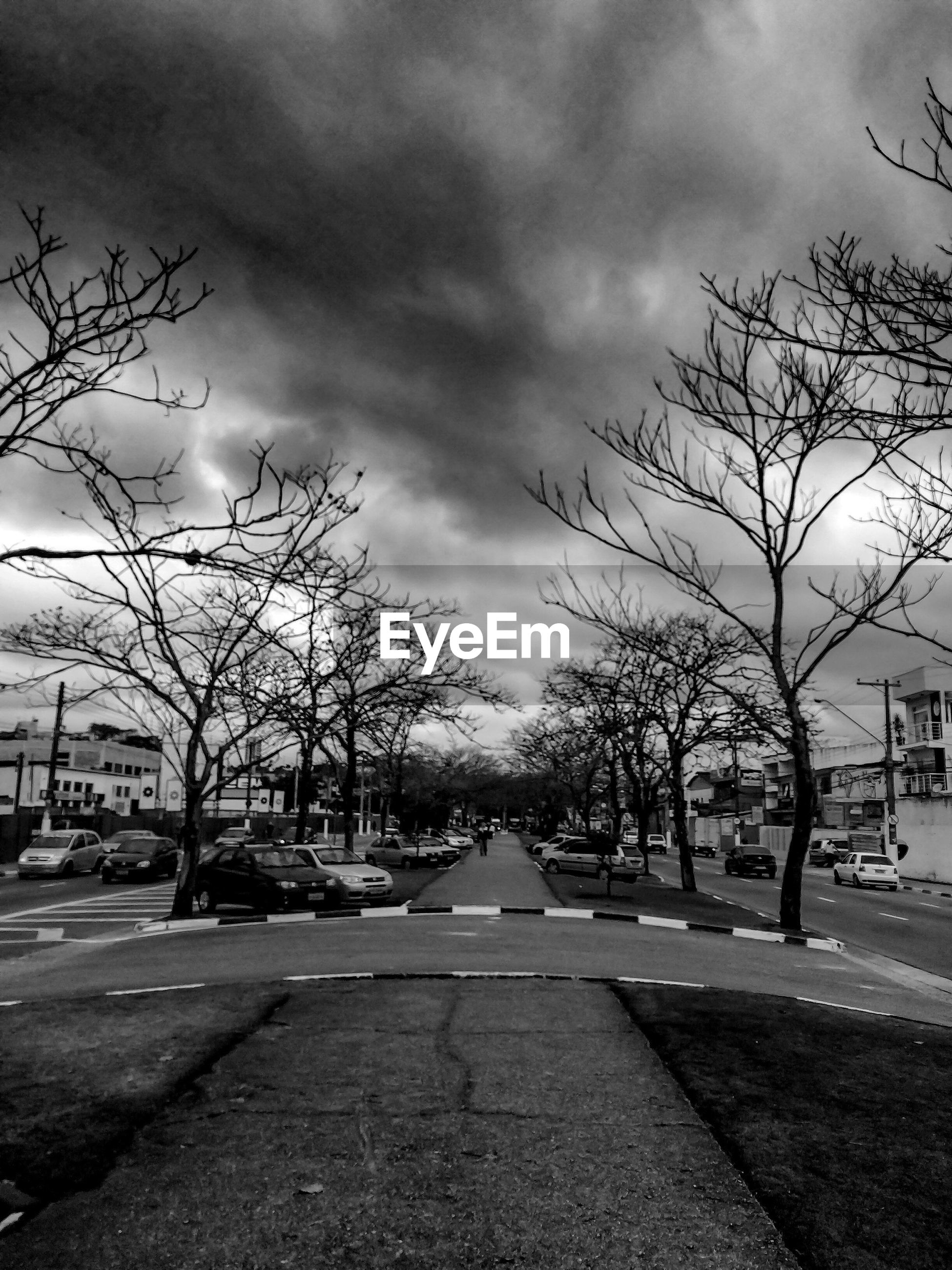 bare tree, cloud - sky, tree, the way forward, sky, transportation, building exterior, road, architecture, built structure, branch, diminishing perspective, cloudy, car, city, treelined, day, vanishing point, footpath, cloud, growth, nature, tranquility, tranquil scene, outdoors, sunbeam, city life, scenics