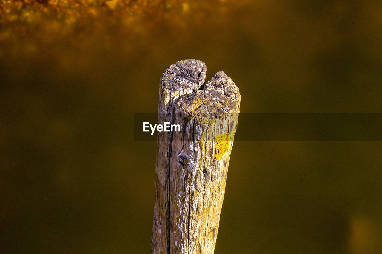 Close-Up Of Pole Against Blurred Water
