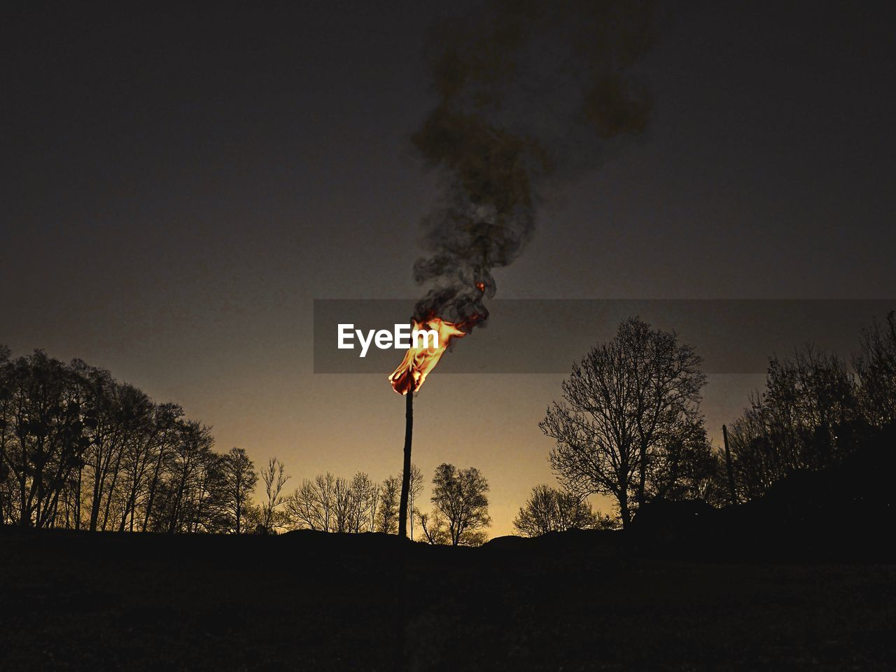 burning, tree, fire, fire - natural phenomenon, smoke - physical structure, flame, plant, environment, accidents and disasters, nature, no people, land, sky, heat - temperature, silhouette, forest fire, outdoors, destruction, communication, motion, pollution, air pollution