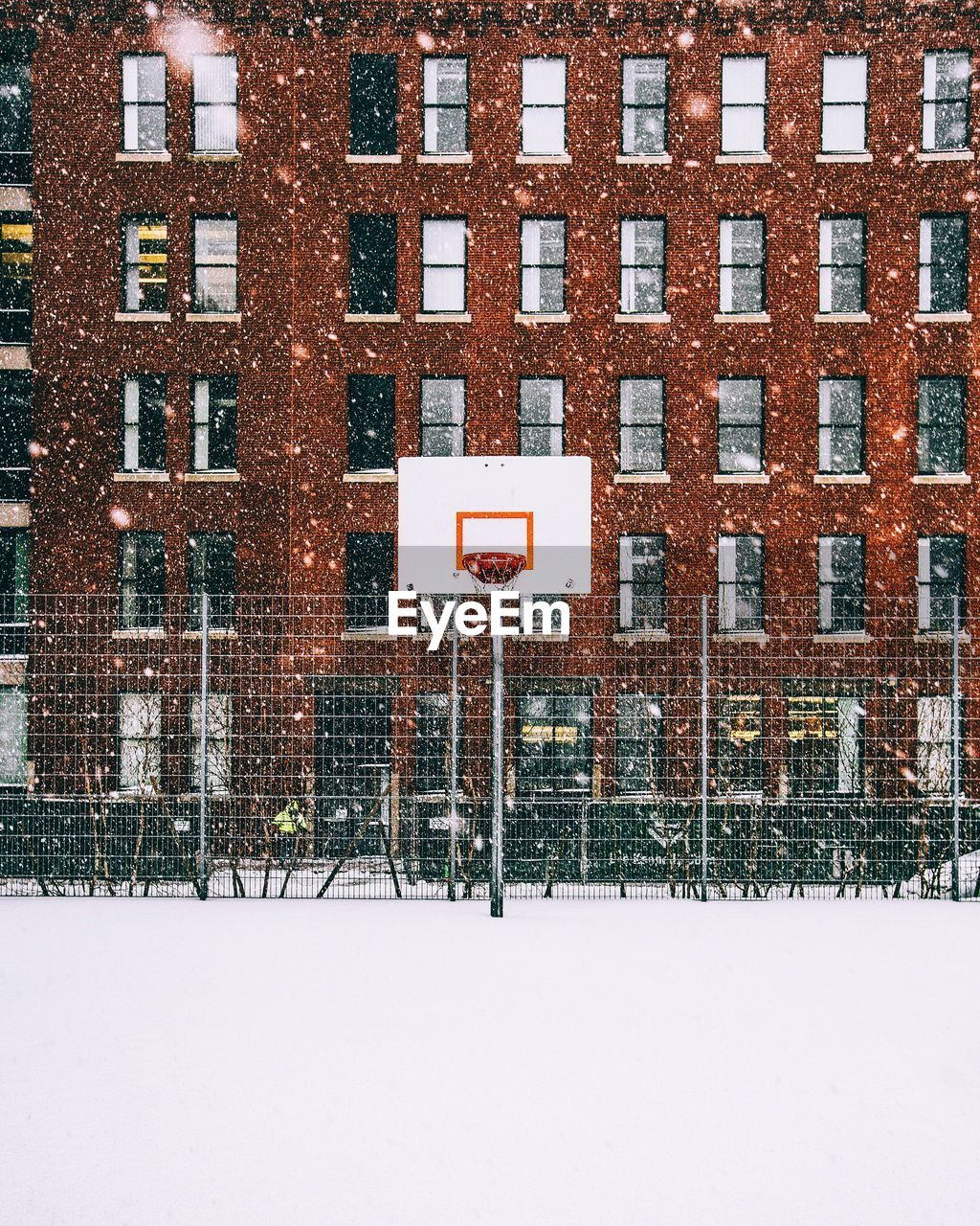 Basketball Hoop In Winter