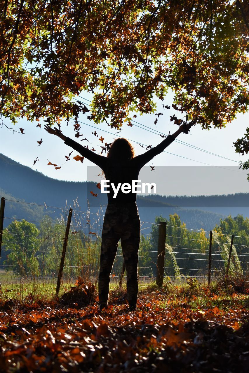 tree, one person, real people, plant, nature, change, standing, land, human arm, lifestyles, leisure activity, autumn, rear view, sky, leaf, beauty in nature, day, plant part, outdoors, arms raised