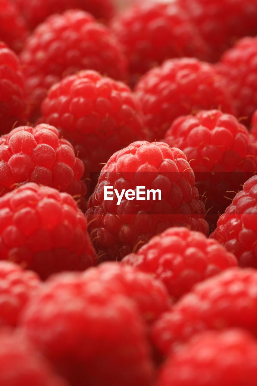 Full Frame Shot Of Raspberry