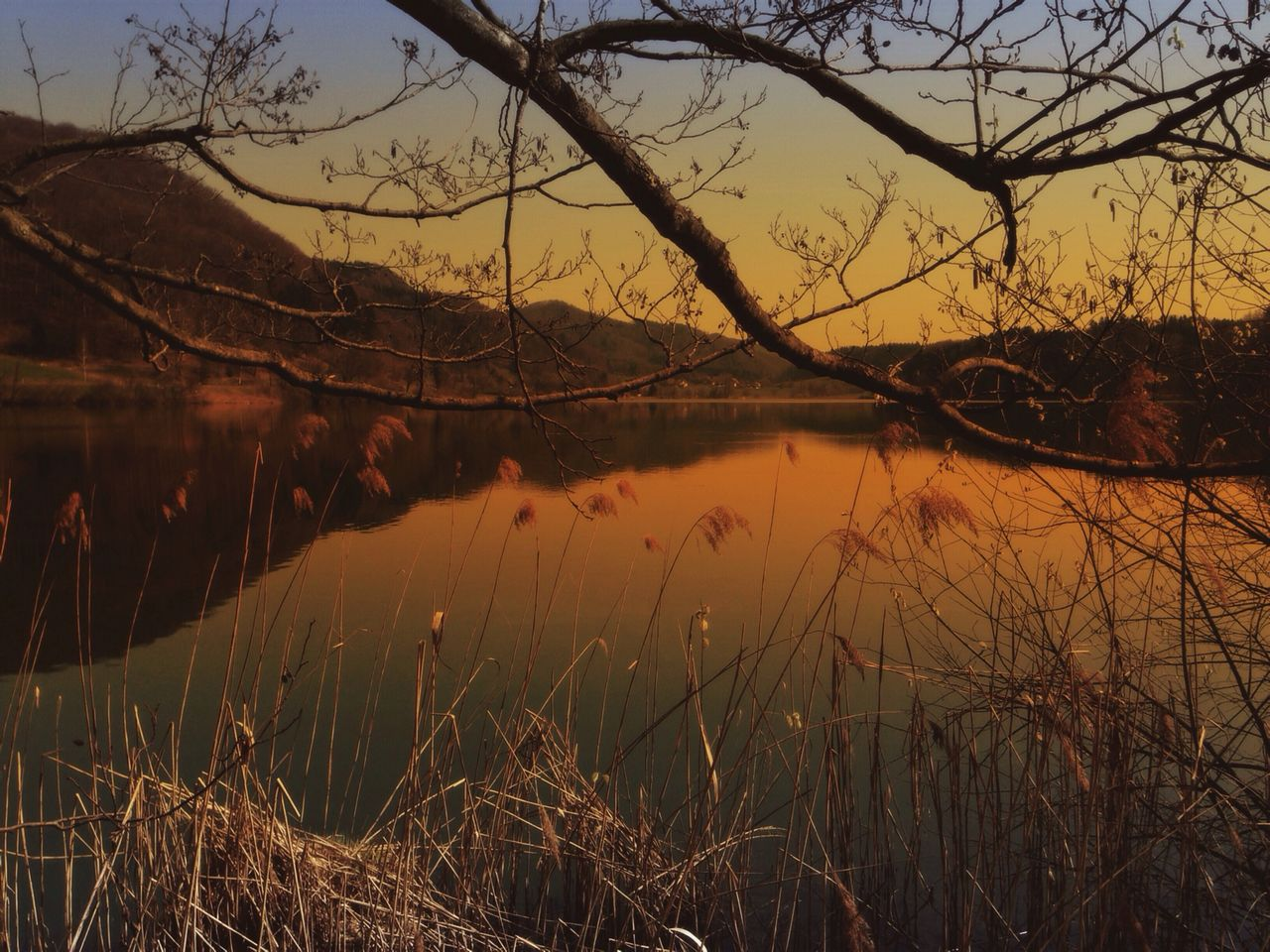 Scenic view of lake and mountains at sunset seen through branches