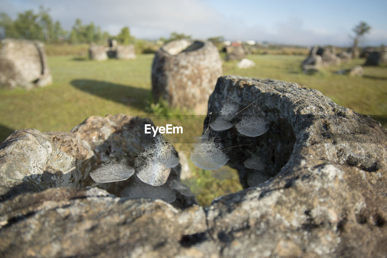 rock - object, day, no people, outdoors, nature, focus on foreground, grass, close-up, sky