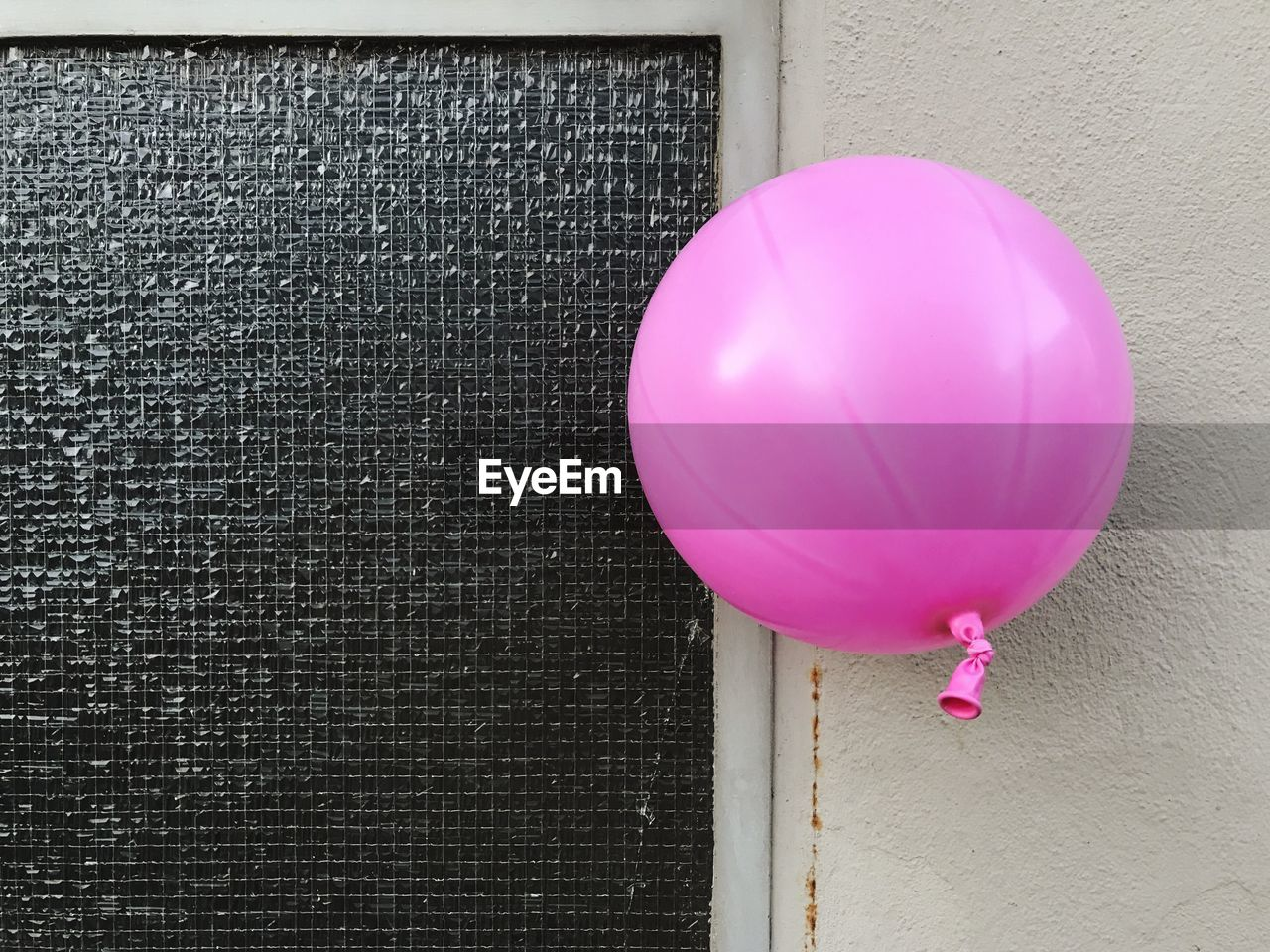 Close-up of pink balloon against white wall