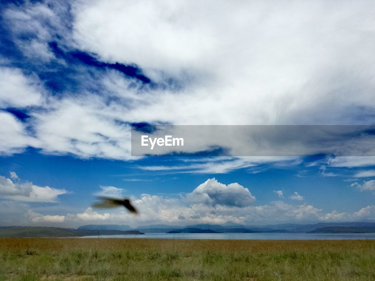 cloud - sky, sky, beauty in nature, scenics - nature, tranquil scene, landscape, tranquility, land, environment, non-urban scene, nature, grass, no people, horizon, day, field, plant, horizon over land, blue, remote, semi-arid
