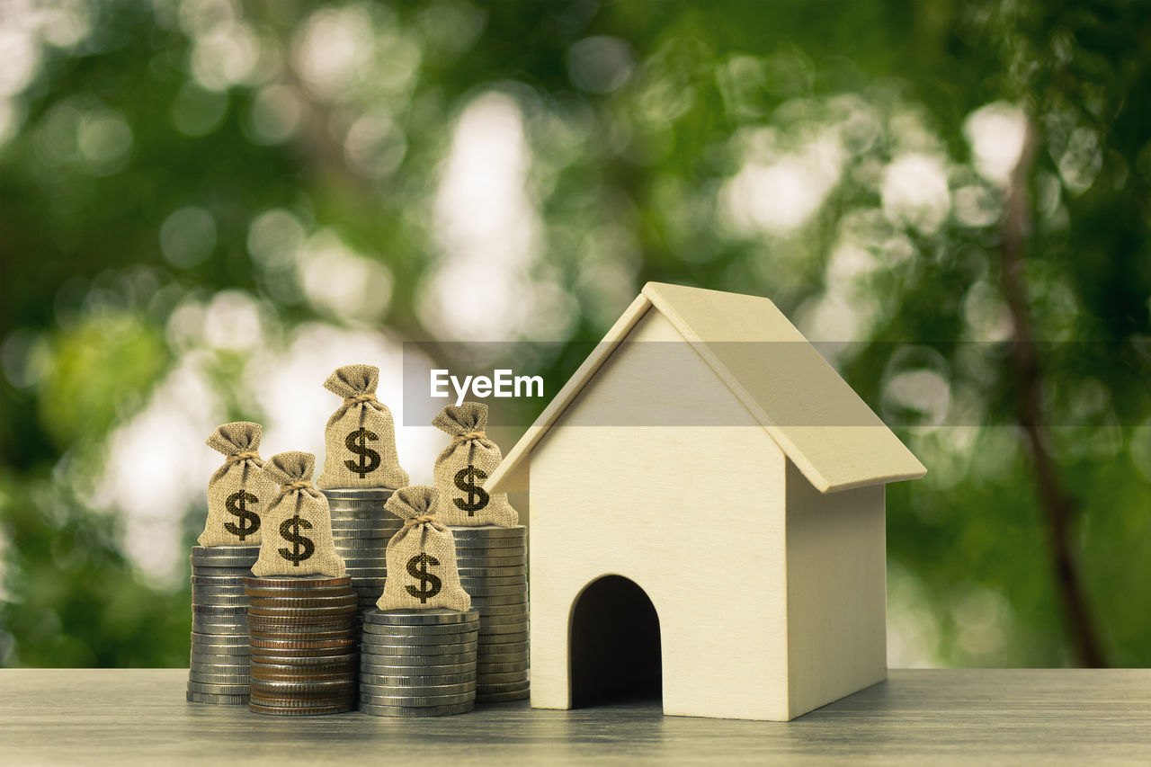 finance, focus on foreground, no people, coin, tree, wealth, still life, stack, large group of objects, savings, nature, table, wood - material, business, investment, gold colored, currency, day, architecture, close-up, small