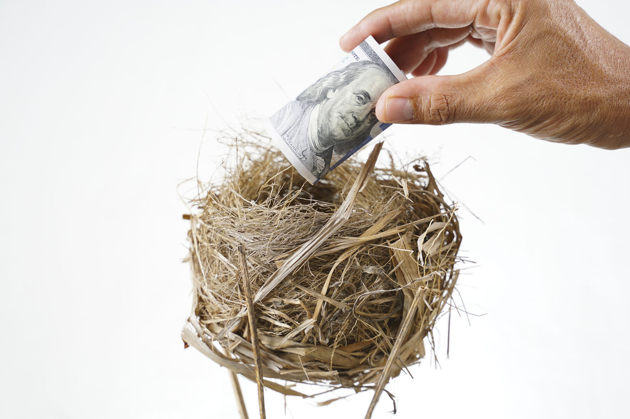 Cropped hand putting paper currency in nest against white background