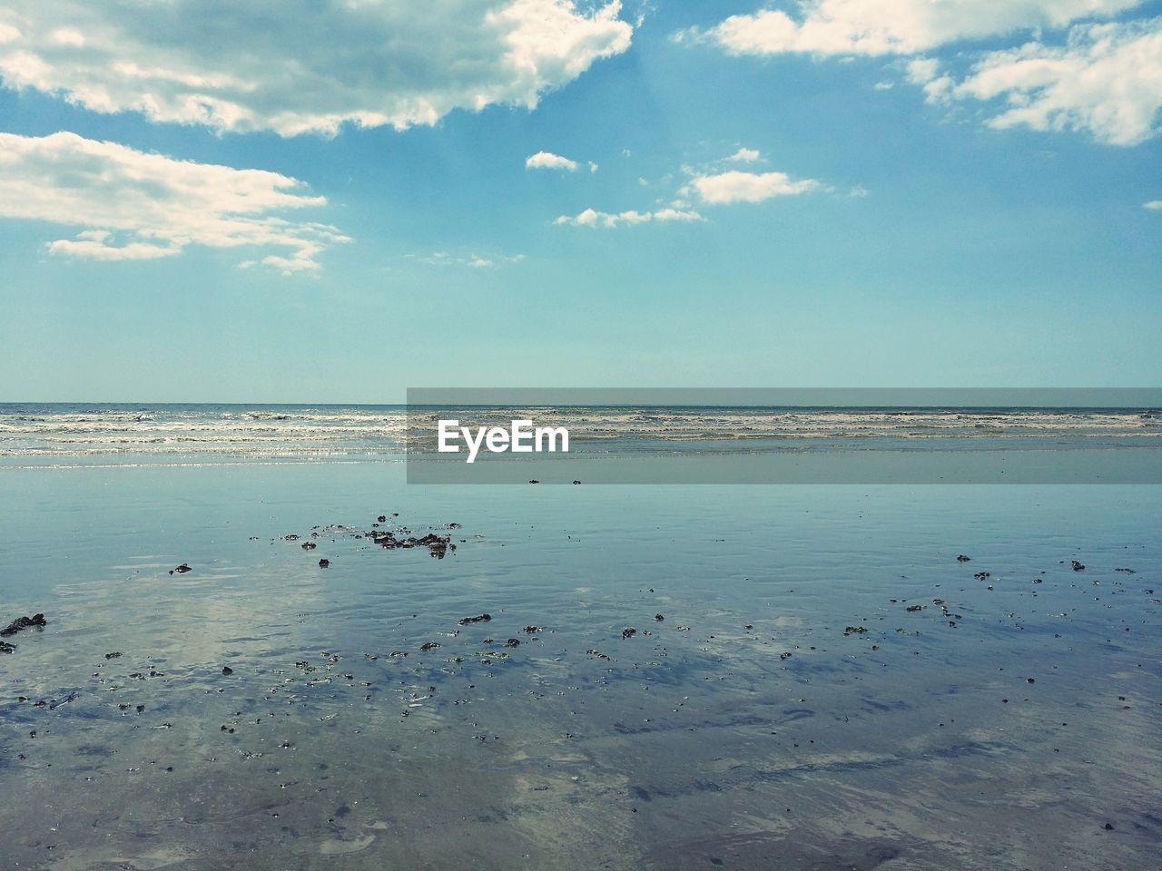 FLOCK OF SEA AGAINST SKY