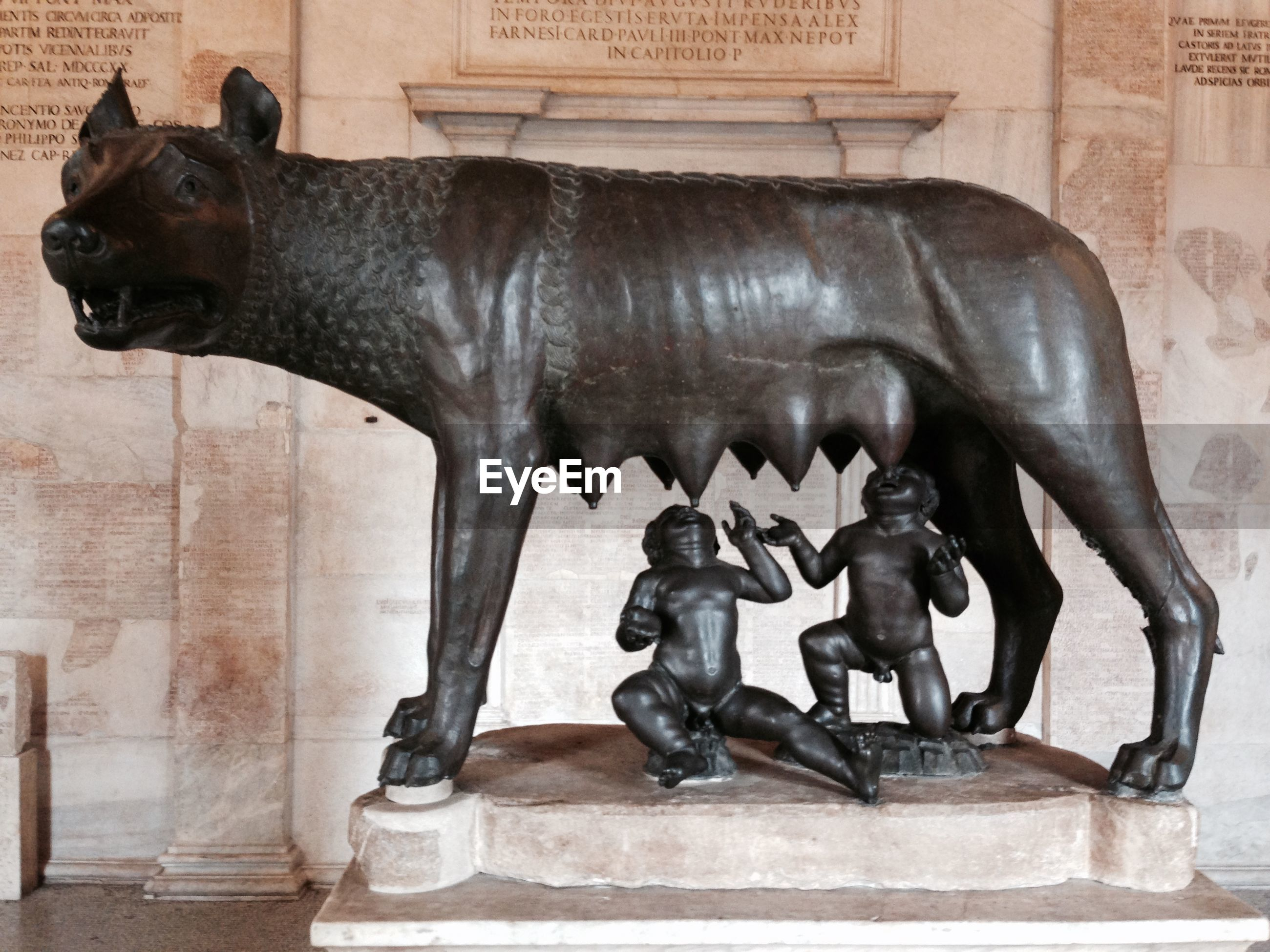 Historic remus and romulus with wolf sculptures at palazzo dei conservatori