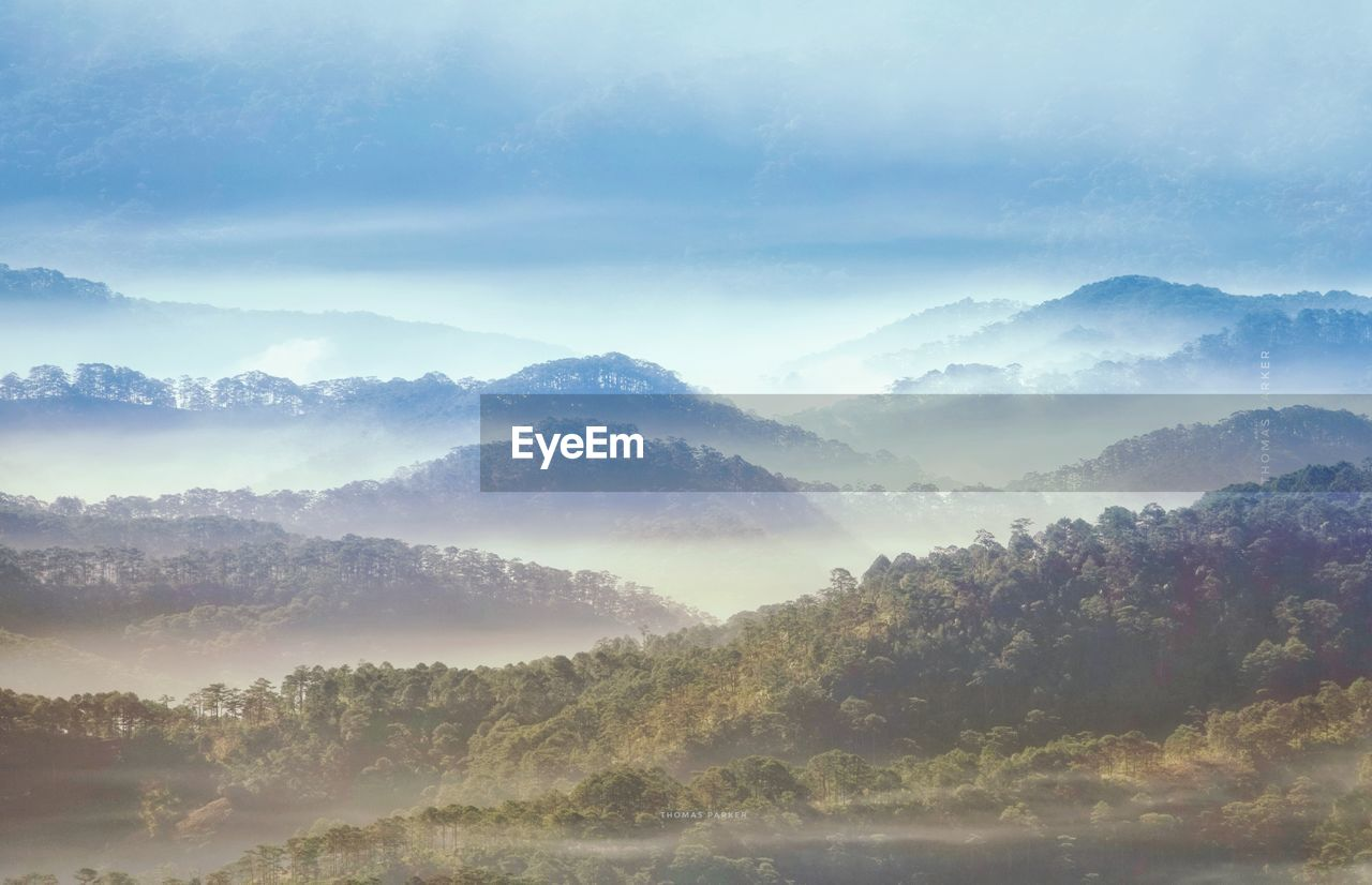 fog, beauty in nature, tranquility, tranquil scene, scenics - nature, sky, mountain, no people, hazy, environment, idyllic, non-urban scene, cloud - sky, day, nature, landscape, tree, mountain range, plant, outdoors