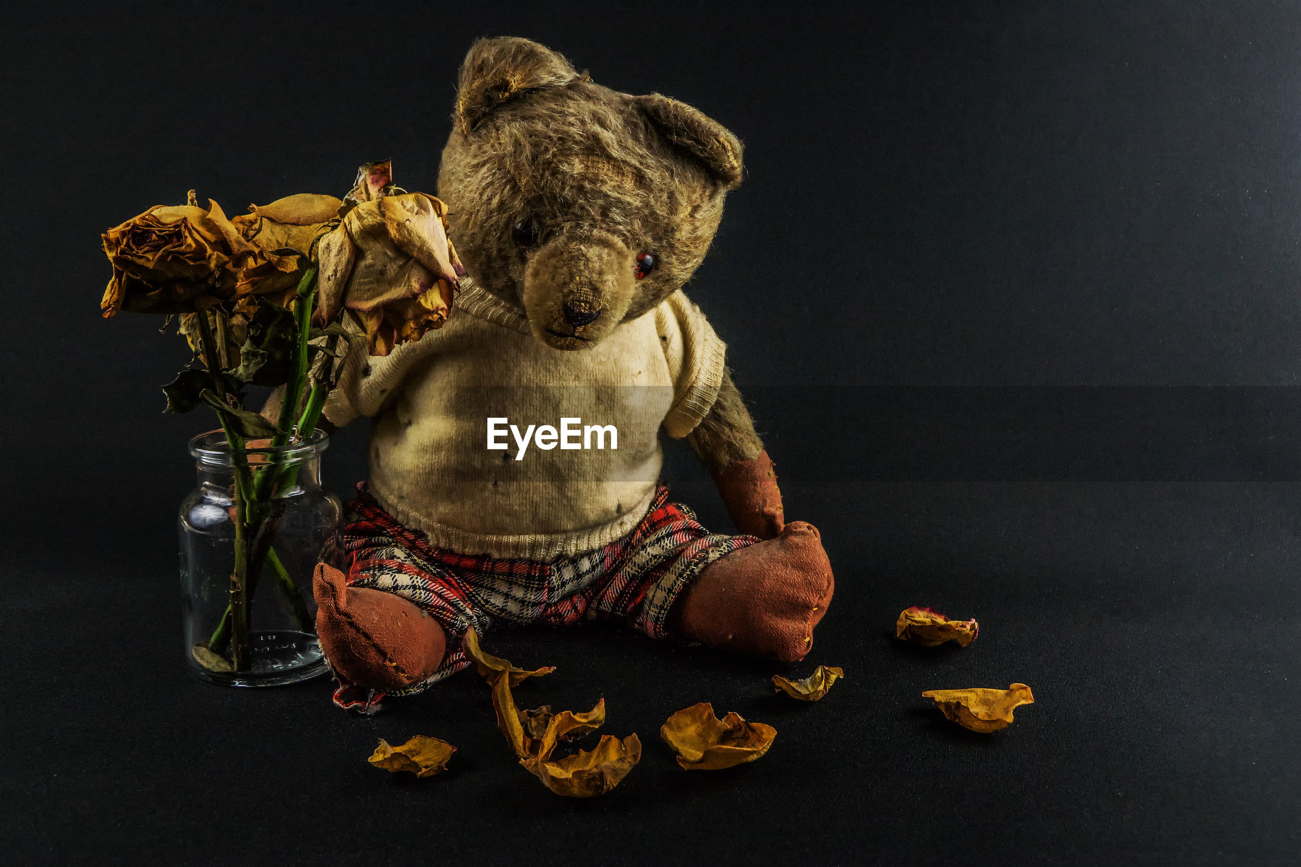 Close-up of stuffed toy with wilted flowers against black background