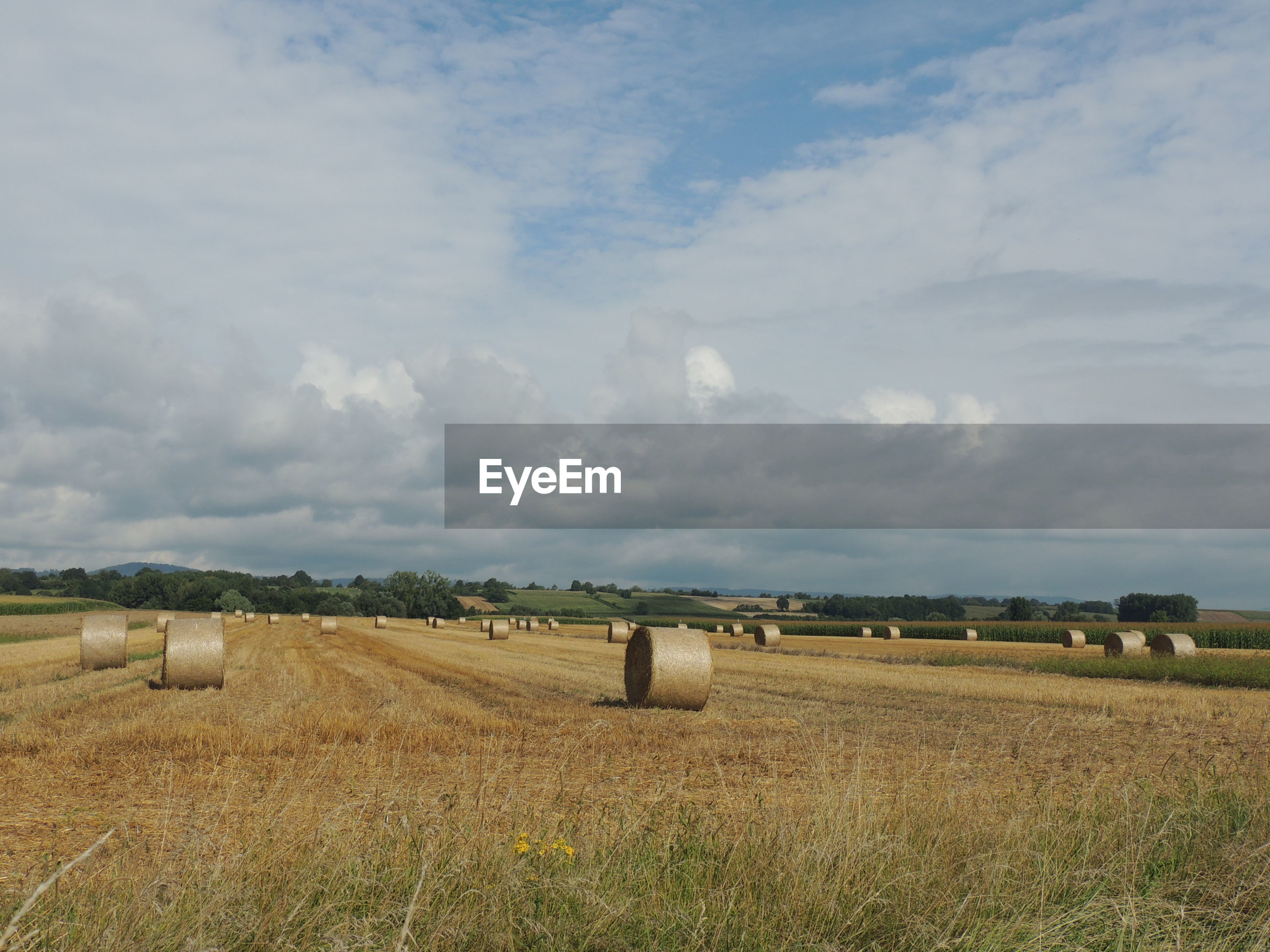 Scenic view of hay bales on field against cloudy sky