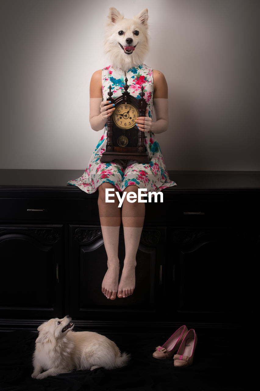 Digital Composite Image Of Woman With Dog Face Holding Clock While Sitting On Cabinet Against Wall