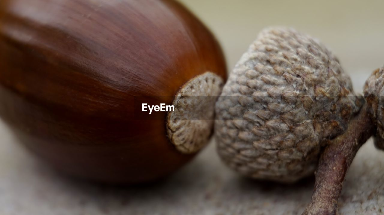close-up, still life, food, food and drink, no people, brown, indoors, selective focus, wellbeing, healthy eating, nut - food, table, nut, focus on foreground, freshness, textured, day, wood - material, acorn, nature