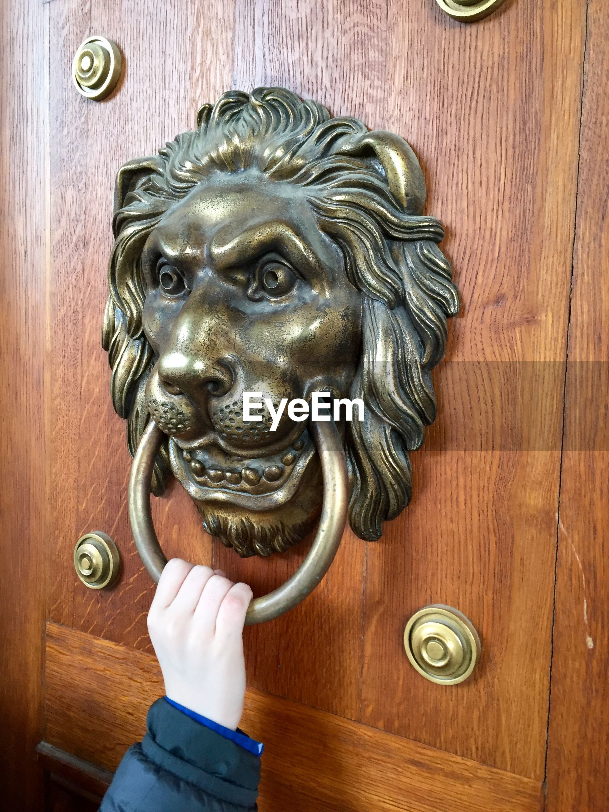 Cropped image of woman holding old-fashioned lion shape door knocker