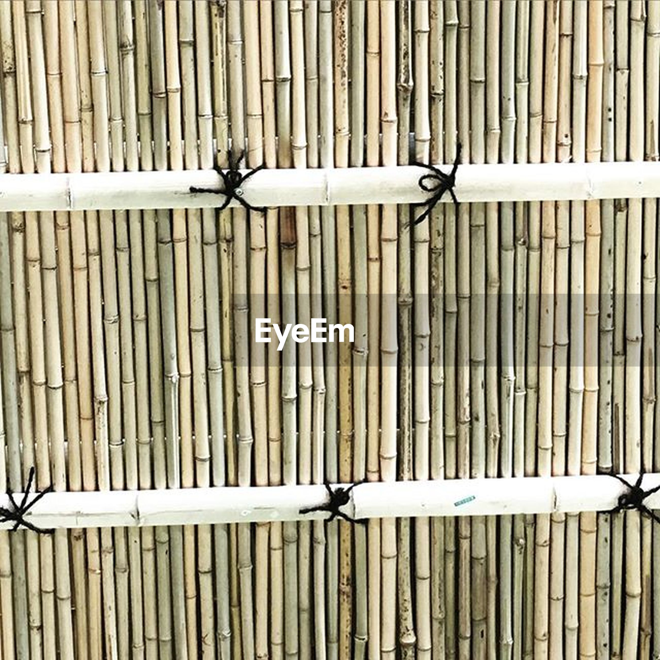 metal, protection, fence, safety, security, full length, railing, day, outdoors, pattern, childhood, metallic, wood - material, full frame, lifestyles, rope, bird, in a row