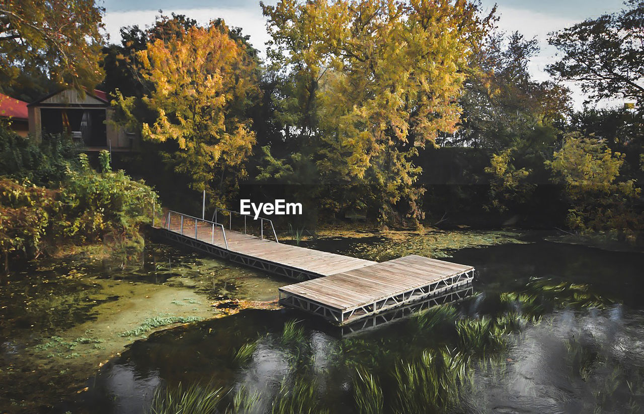 water, tree, plant, nature, reflection, lake, no people, waterfront, beauty in nature, day, tranquility, architecture, autumn, built structure, growth, change, connection, bridge, outdoors, autumn collection