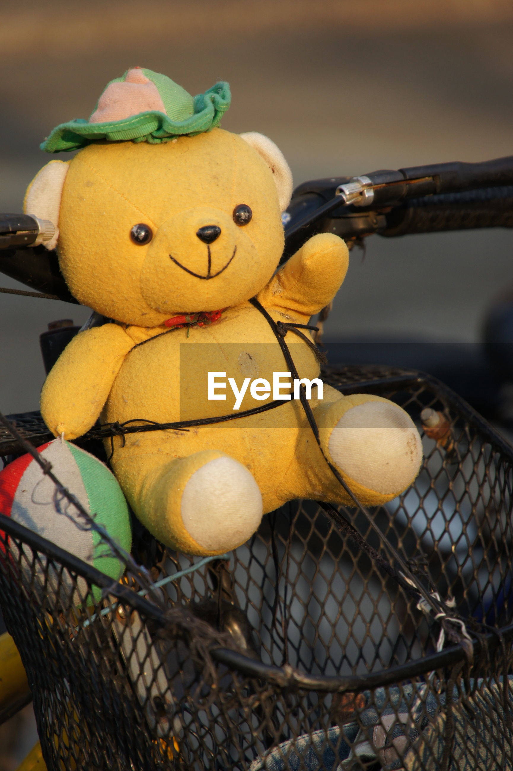 Stuffed toy in bicycle basket