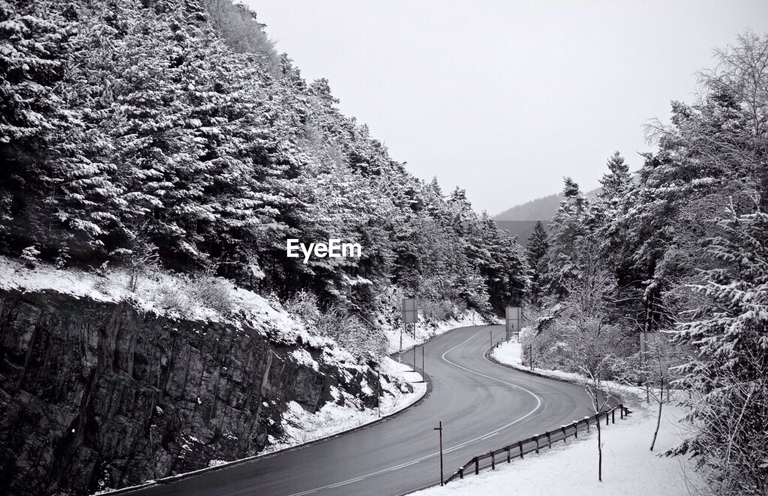 the way forward, road, transportation, mountain, road marking, tree, tranquil scene, diminishing perspective, tranquility, vanishing point, clear sky, scenics, nature, country road, beauty in nature, empty road, non-urban scene, asphalt, long, empty