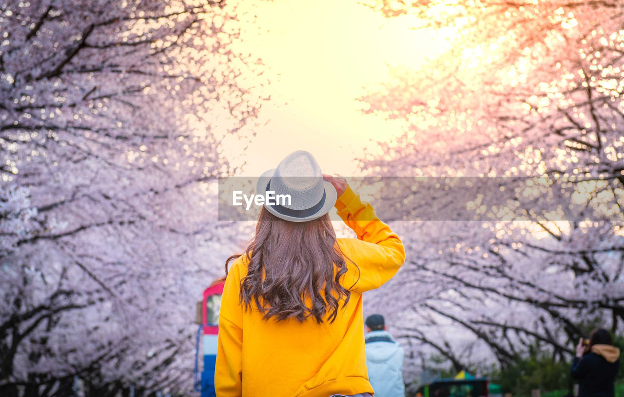 Rear view of woman standing against trees during winter