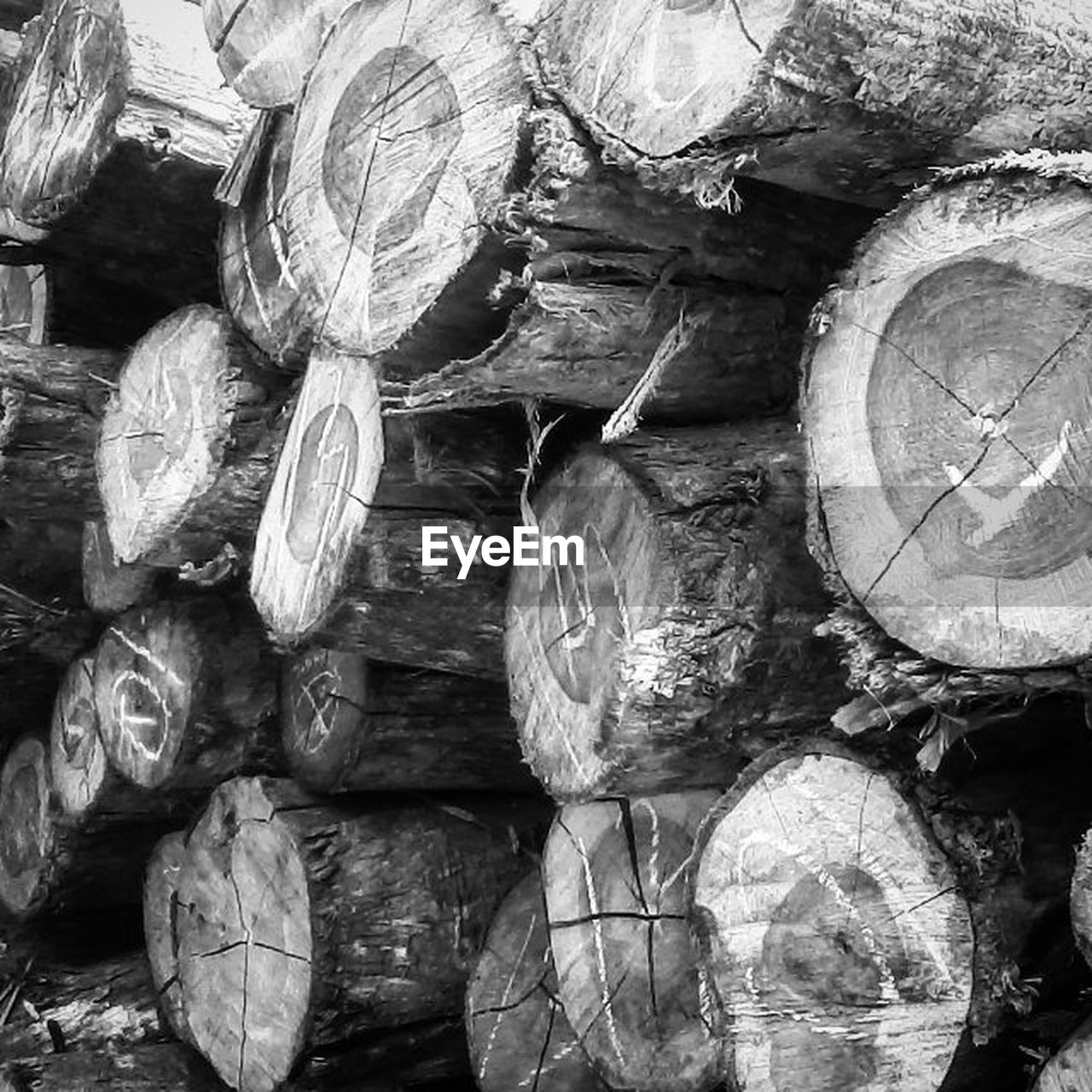 stack, full frame, backgrounds, textured, log, no people, woodpile, day, close-up, outdoors, forestry industry